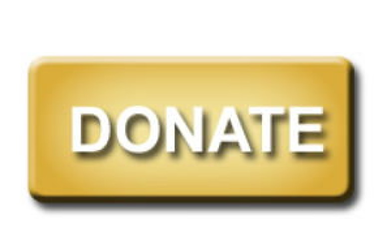 Donate Button_mini
