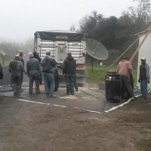 Unloading Truck of Organic Corn